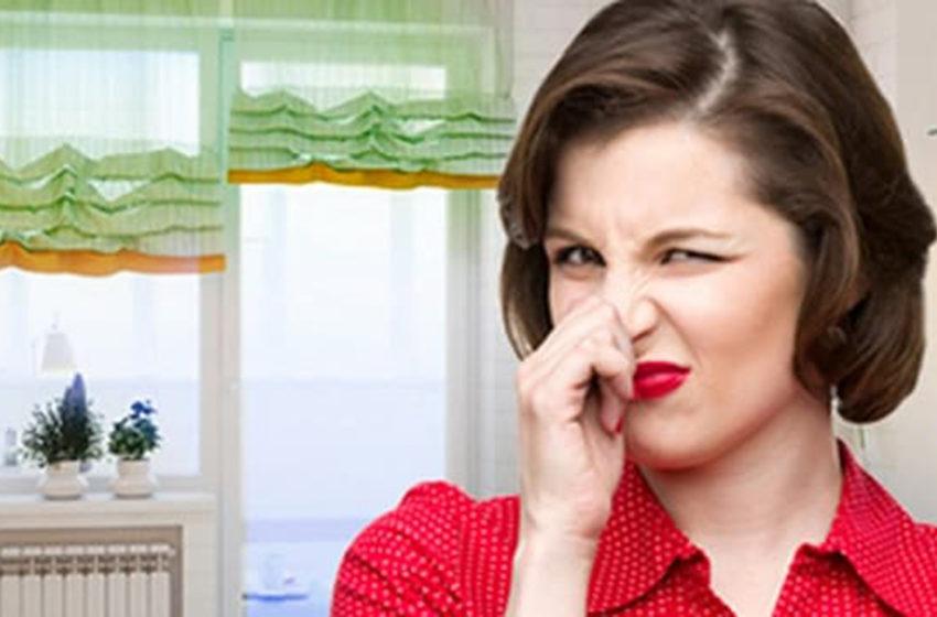 Чем пахнет в доме у стариков? Я выяснила причину